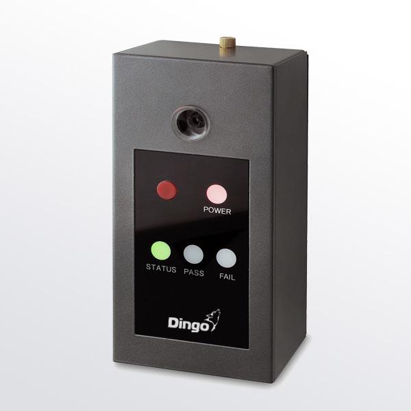 DINGO B01